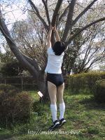 春よ来いぃ〜♪、木登りブルマーだょ♪