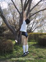 木登りブルマー、春よ来い♪